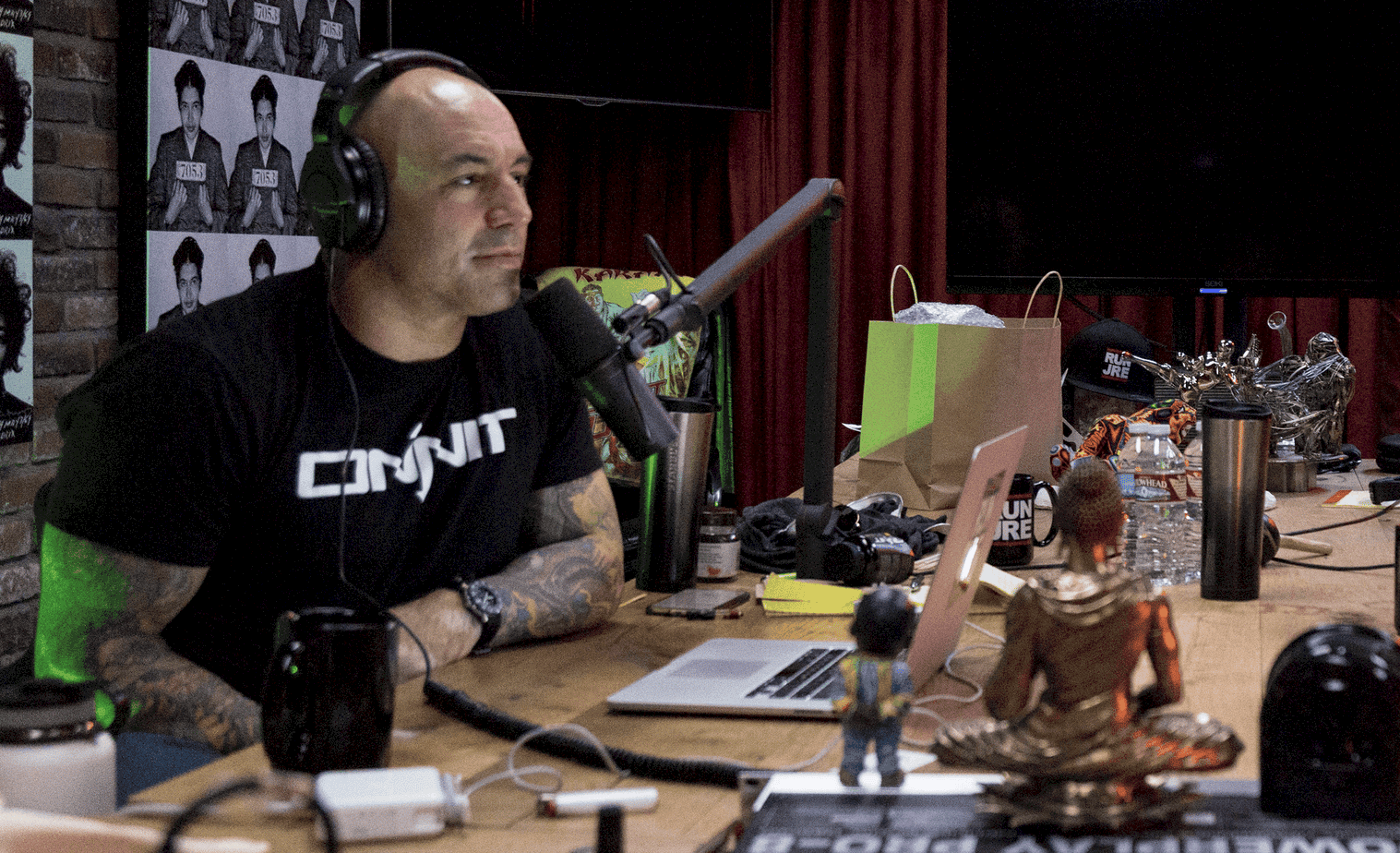 The 13 Best Joe Rogan Experience Podcast Episodes | Discover the